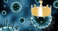 Uprzejmie prosimy o zapoznanie się z informacją Głównego Inspektoratu Sanitarnego opublikowaną w związku z zagrożeniem koronawirusem: Zachorowania na COVID-19 (zapalenie płuc spowodowane nowym koronawirusem SARS-CoV-2) – aktualizacja Aby ograniczyć epidemię, […]